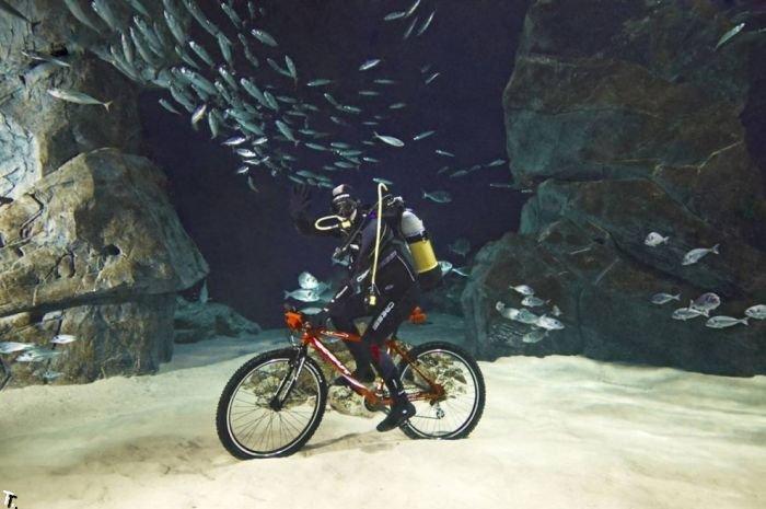 как можно ездить на велосипеде