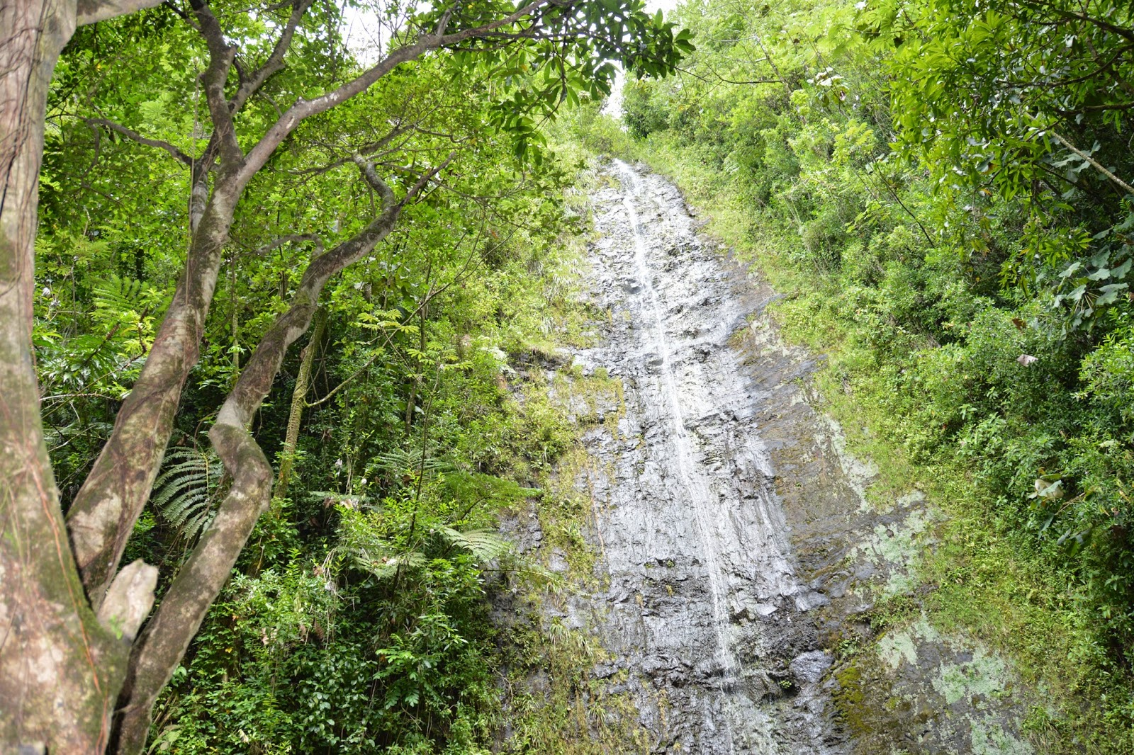 honolulu waterfall