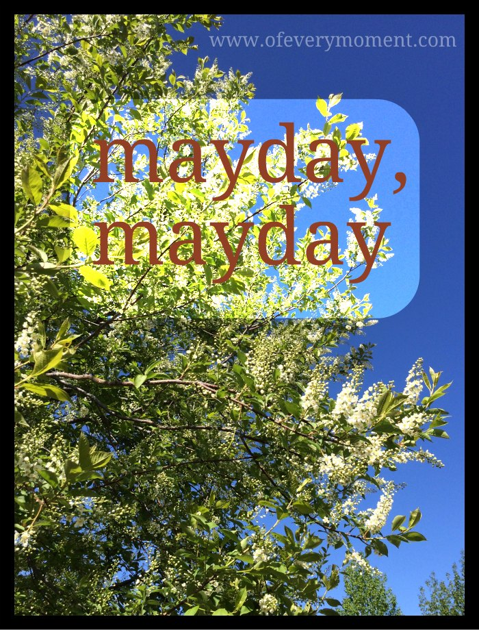 May 1st - a mayday distress call or a day to celebrate?