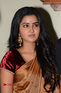 Actress Anupama Parameswaran Stills in Silk Saree with Shatamanam Bhavati Team at Sandhya Theater  0020.JPG