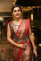 Tapsee Pannu Latest Stills in Red Silk Saree at Anando hma Pre Release Event .COM 0061.JPG