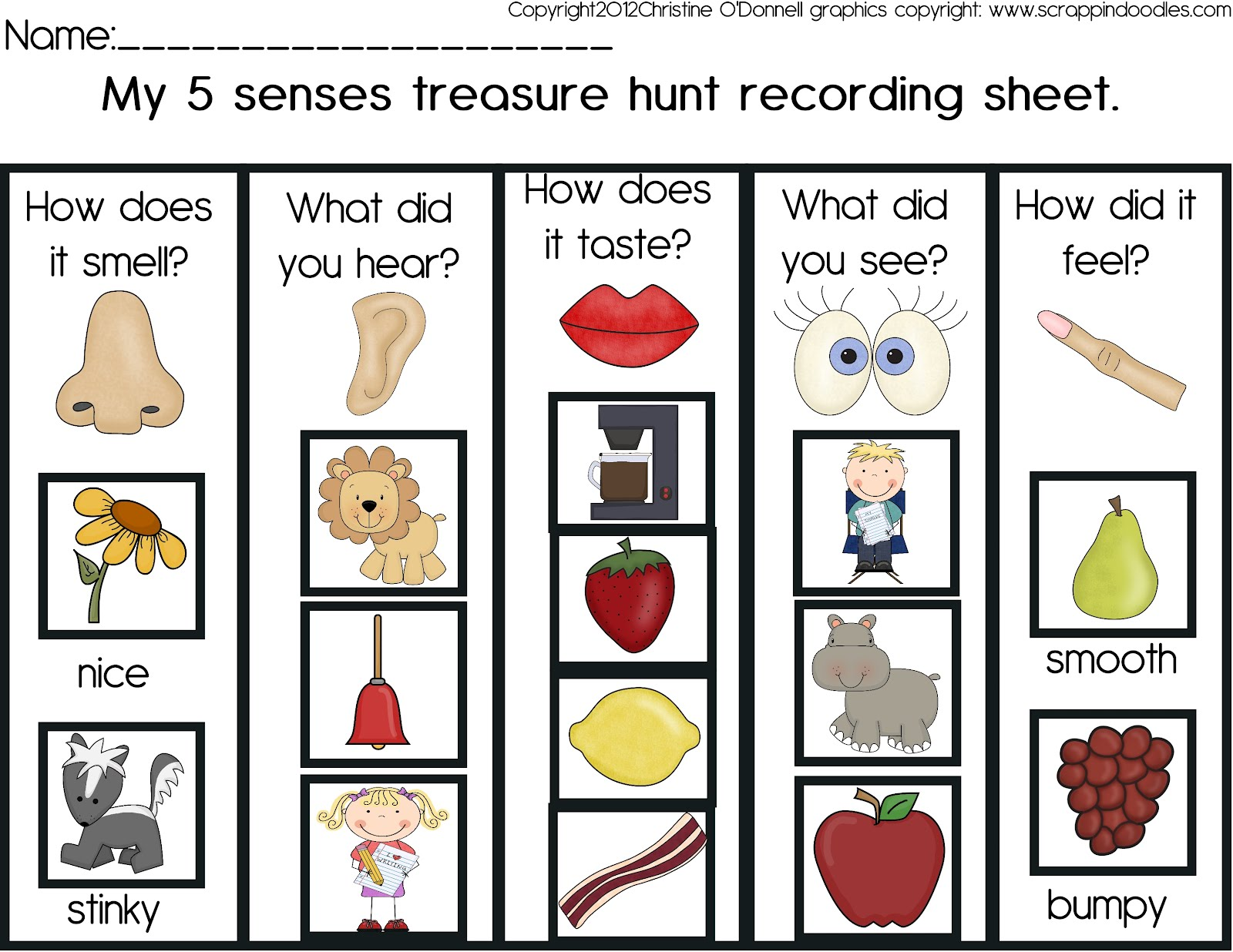 The Crazy Pre K Classroom 5 Senses Treasure Hunt And A Freebie