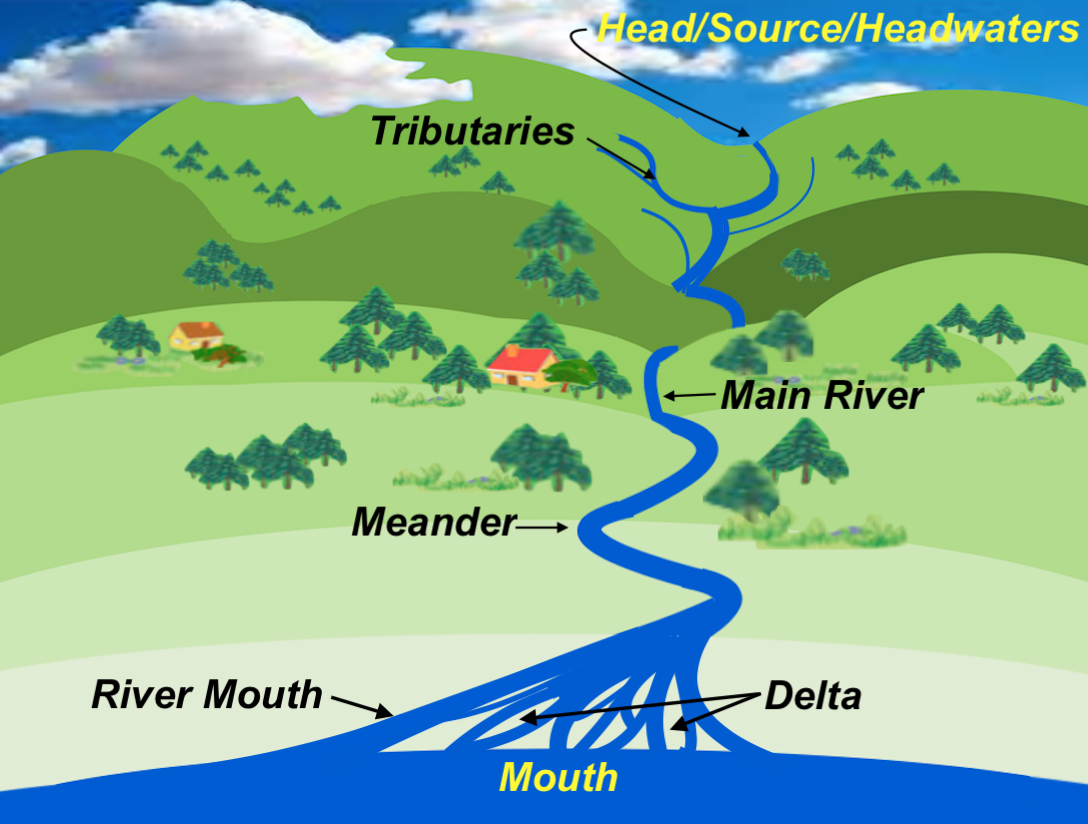Diagram Of A Delta Landform Volkswagen Touareg Wiring Nephicode The Mississippi River  Head