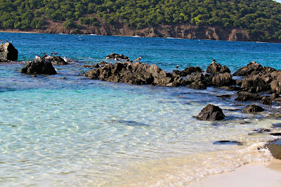 http://www.theredapronscravings.com/2015/06/coki-beach-st-thomas-usvi.html
