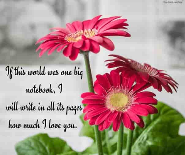 sweet love letter to my sweetheart with flowers