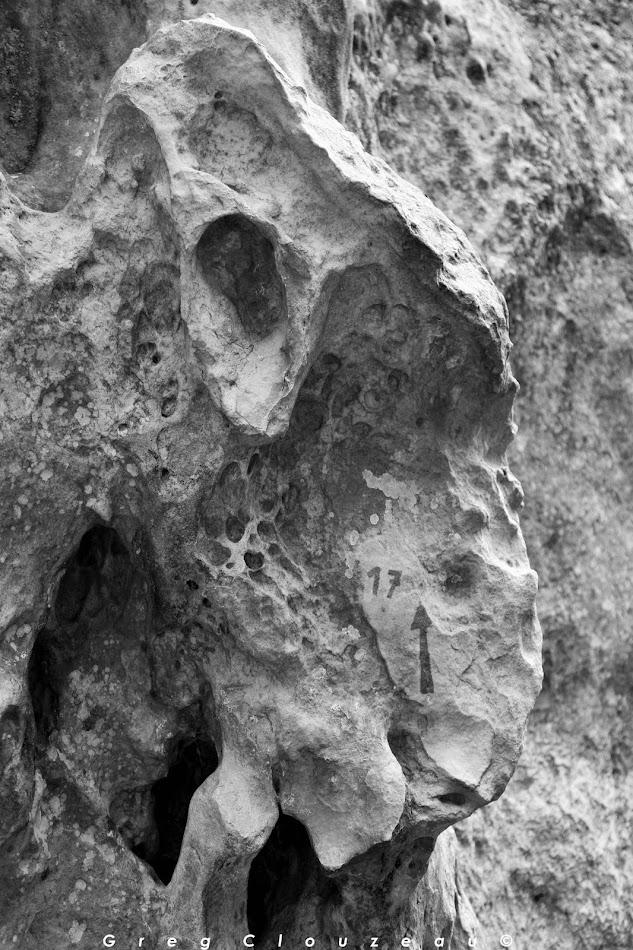 Chèvre n°17, Rocher de l'Eléphant, Larchant
