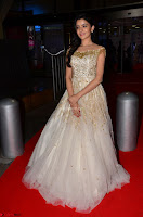 Rukshar Mir designer Anarkali Gown at 64th Jio Filmfare Awards South  2017 ~  Exclusive 018.JPG