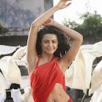 Surveen Chawla   Hot Wet Saree Photos from Telugu Movie Itlu Prematho