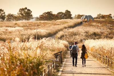 Top-10-dia-diem-dep-nhat-mua-thu-han-quocTop 10 địa điểm đẹp nhất mùa thu hàn quốc
