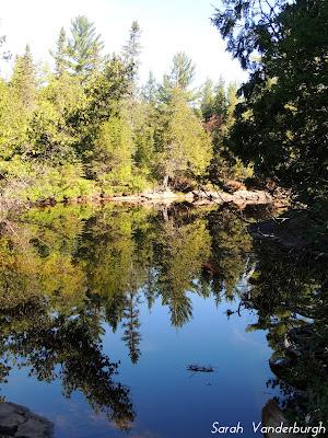 chutes trail reflection