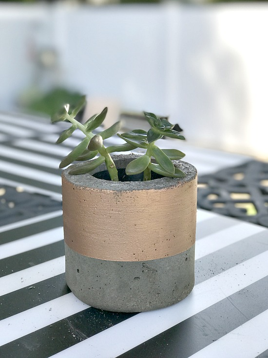 DIY Metallic succulent planter