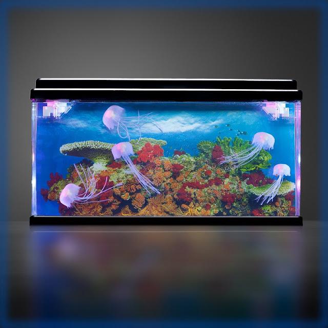 Ocean World Aquarium
