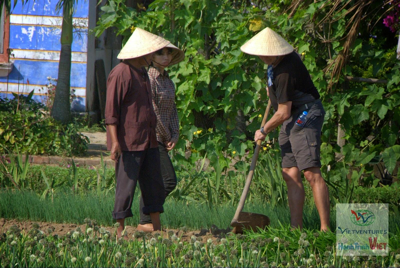 Trải nghiệm một ngày làm nông dân ở Hội An