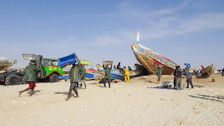 Export a lot of fish from Nouakchott