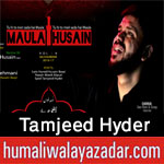 http://www.humaliwalayazadar.com/2015/04/tamjeed-hyder-nohay-2013-to-2016.html