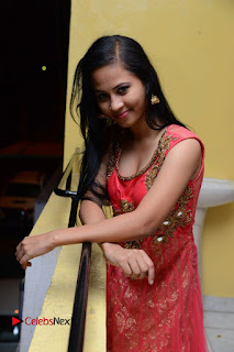 Actress Aasha Rakul Pictures in Red Long Dress at Vetade Puli Audio Launch  0051.JPG