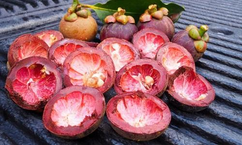 Kulit manggis - obat herbal asam urat