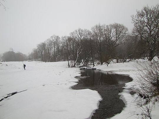 Wisłoka na wysokości wsi Długie.