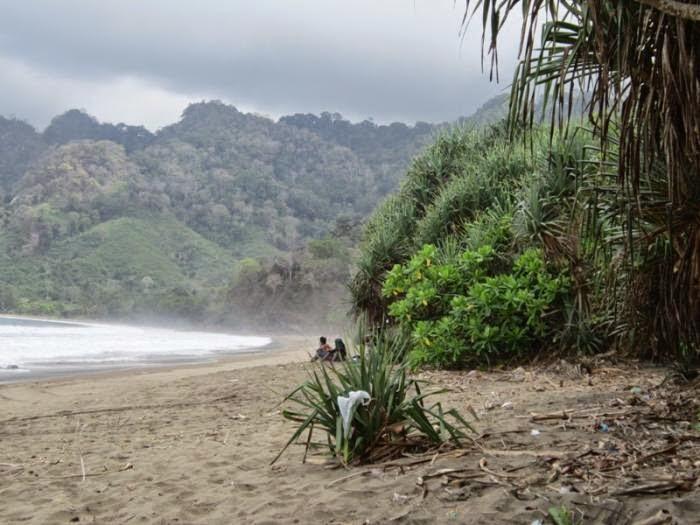 Pantai Bandealit, Meru Betiri.