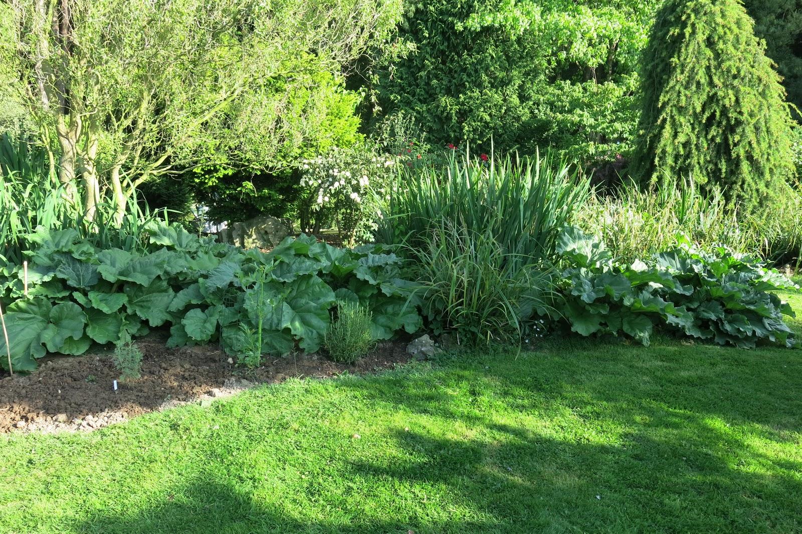 Parcours botaniques cueillette et vente de rhubarbe - Deco jardin nice rue barla versailles ...