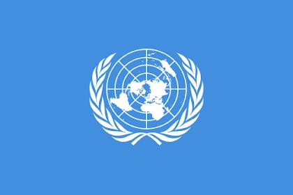Dewan Keamanan PBB, Pengertian, Fungsi, Tugas Lengkap