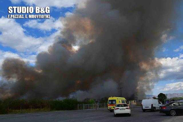 Αργολίδα: Πυρκαγιά στην παραλιακή Ναυπλίου Νέας Κίου (βίντεο)