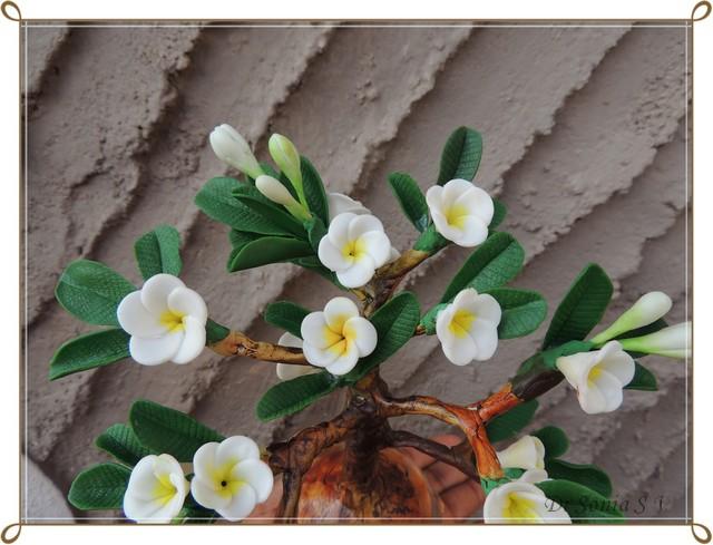 thai clay plumeria
