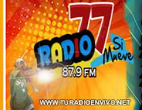 RADIO 77 JULIACA