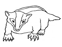 Walking Badger Free Printable Kids Coloring Pages