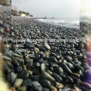 çaresizlik, deniz, deniz kıyısı, deniz yıldızı, resimli mesajlar, resimli sözler, sensizlik, sessizlik, deniz yıldızı canlısı, deniz yıldızı nasıl ürer, deniz yıldızı nasıl beslenir