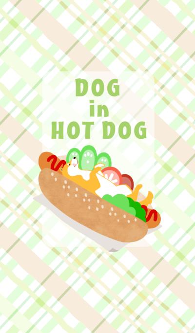 Dog in hot dog
