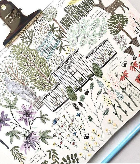 Ilustraciones botánicas Chatsworth Gardens