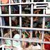Tocantins tem mais mandados de prisão em aberto do que presos cumprindo pena