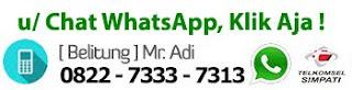WhatsApp Kami Sekarang juga