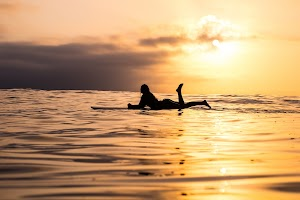 Girl On Surfing Board On The Sea In Sunset