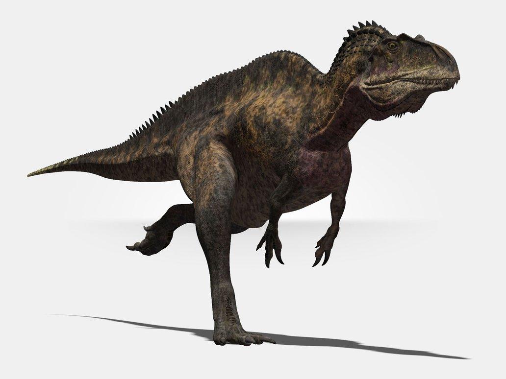 Los 10 Grandes Dinosaurios Carnivoros De Todos Los Tiempos Nuestroclima Triceratops fue un dinosaurio herbívoro proceratops es un dinosaurio herbívoro que vivió en asia en tiempos de cretácico superior, hace 75. nuestroclima