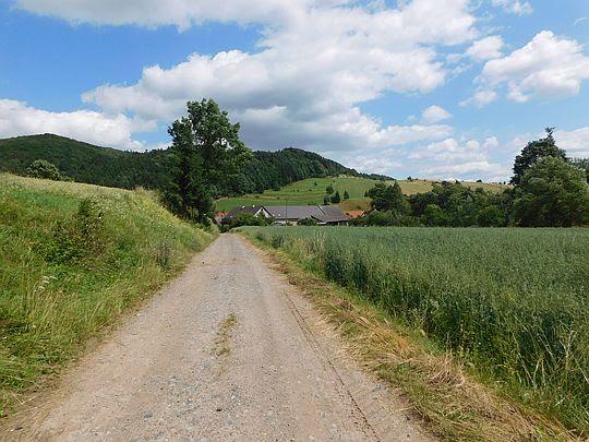 Zabudowania wsi Czerwieńczyce.