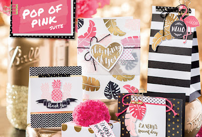 Pop of Pink product suite, Stampin' Up!