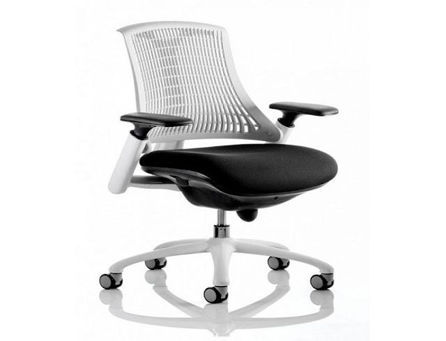 best buy ergonomic office chair for back pain sale online