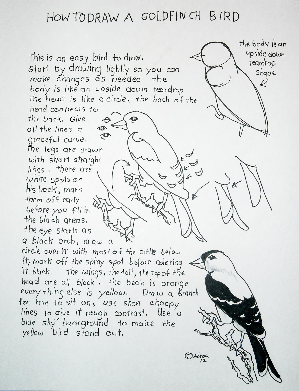 How To Draw Worksheets For The Young Artist How To Draw A Bird Easy Lesson And Worksheet