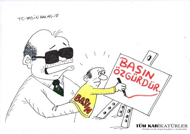 basın özgürlüğü karikatürü