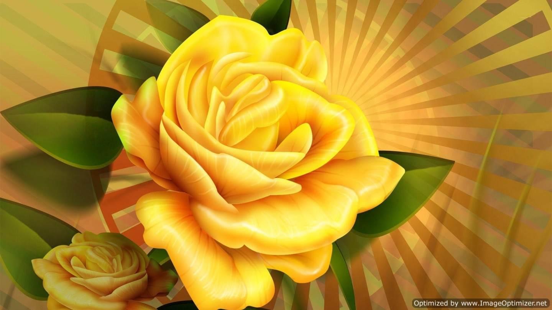 Yellow rose hd wallpaper free hd wallpaper - Yellow rose images hd ...