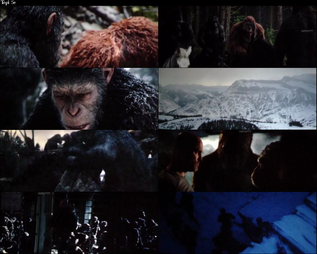 Dawn Of The Planet Of The Apes [Dual Audio]