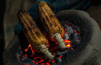 Too hot, too soon: Maize harvests risk ruin as temperatures rise. (Image Credit: Debashis Biswas on Unsplash) Click to Enlarge.
