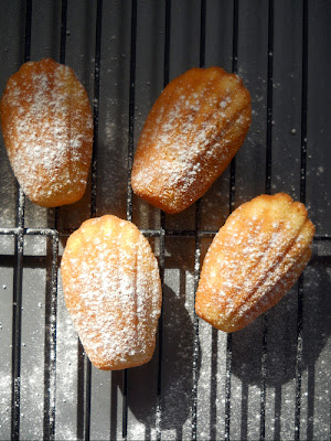 Teatime Recipe French Madeleines Sweet Tidings