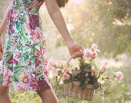 Resultado de imagem para flores de virtudes