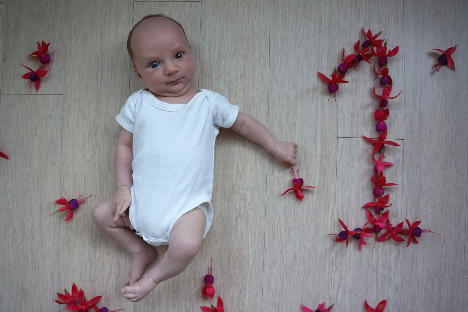 baby with number one made from flowers