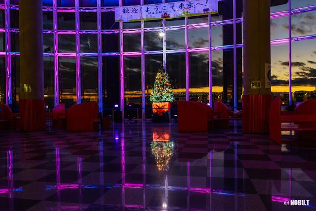 晴海客船ターミナルのクリスマスツリーとイルミネーション