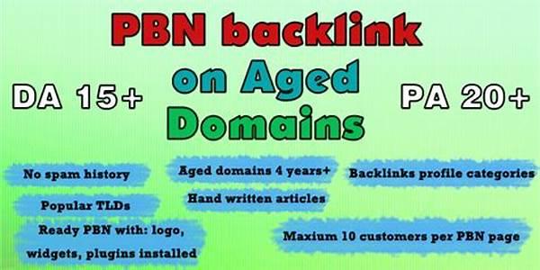 Jasa  Backlink PBN Aged Domain Matrik Bagus dan Dari Backlink Authority