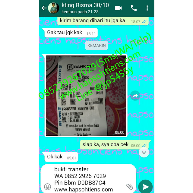 Hub. 085229267029 Hapsohtiens Distributor MHCA Tiens Karimun Agen Stokis Toko Cabang Tiens Internasional